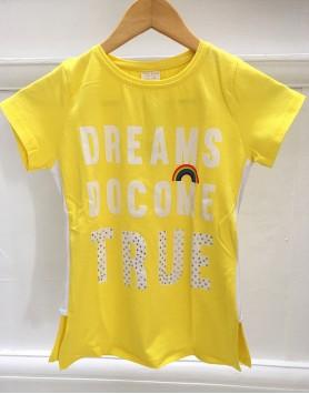 Alice Dream Top